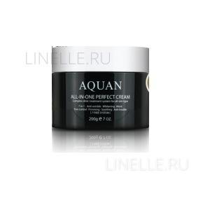 Aquan all-in-one perfect cream [Крем для лица многофункциональный ]