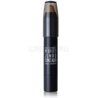 Perfect jumbo concealer 3.5 г [Консилер идеальный]